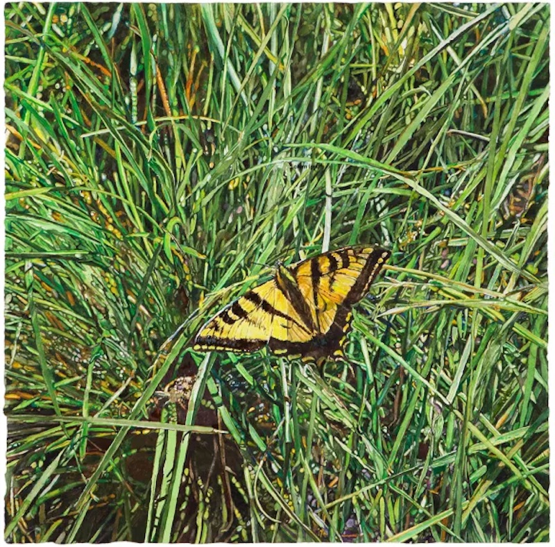 joseph-raffael_blades-of-grass-and-butterfly_watercolor_2020.jpg copy