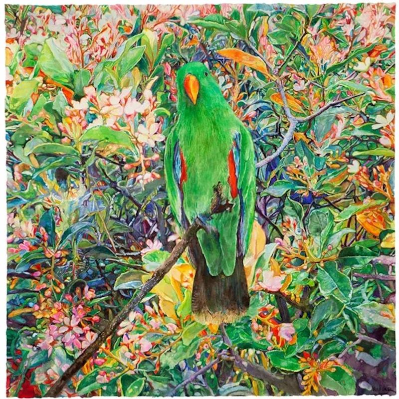 joseph-raffael_parrot-moving-toward-the-light_watercolor_2020.jpg copy